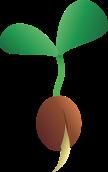 seedling-2163773_960_720